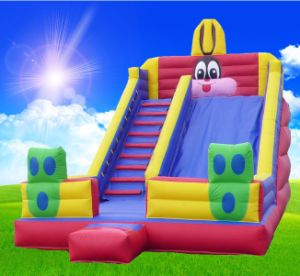 Inflatable Christmas Boucy Toys Inflatable Slide pictures & photos
