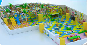 Indoor Playground (NC-IP213) pictures & photos