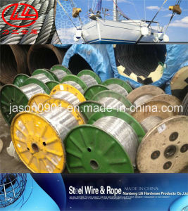 Oval Galvanized Steel Wire, Steel Wire, Stainless Steel Wire pictures & photos