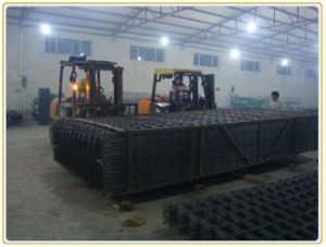 Reinforcement Mesh pictures & photos