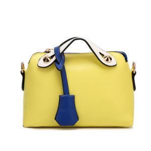 2017 Newest Designer Fashion Women Leather Handbag pictures & photos