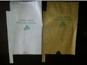 Good Breathability Paper Mango Growing Bag to Decrease The Damages Cause by Rain, Strong Wind and Falling of Fruit pictures & photos