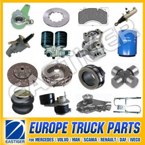 Over 2500 Items Auto Parts for Daf pictures & photos