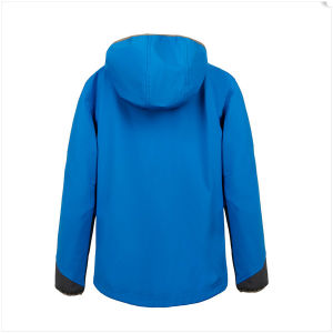 Men′s Platinum Hooded Down Jacket pictures & photos