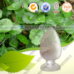 Health Care Product Centella Asiatica Extract Asiatic Acid pictures & photos