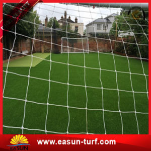 Cheap Price Natural Outdoor Fake Grass Carpet for Sports Field pictures & photos