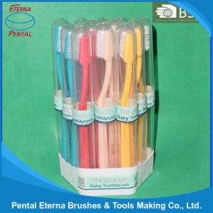 Made in China 12PCS Tooth Brush Set pictures & photos