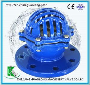 Flange End Ductile Cast Iron Foot Valve (H42) pictures & photos