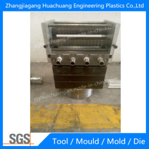 PA66 Heat Insulation Strip Mould pictures & photos