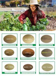 40% Compound Amino Acid Powder for Fertilizer pictures & photos