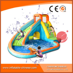 Inflatable Amusement Slide with Pool for Summer (T11-308) pictures & photos