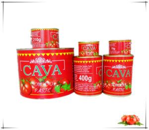 Cava Brand Tomato Paste Canned Tomato Paste pictures & photos