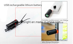 64 LED Programmable Spoke 26 Inch Wheel Light pictures & photos