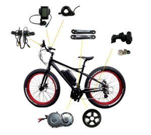 48V 750W Bafang MID Electric Bike Kit with Lithium Battery pictures & photos