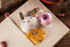 Ivenran Preserved Fresh Flower Yellow Rabbit Keychain for Gift and Decoration pictures & photos
