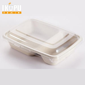 2 Compartments Food Container pictures & photos
