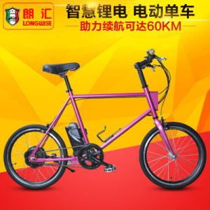 Ce TUV Certificate Electric Ebike (LWEB-T2008) pictures & photos