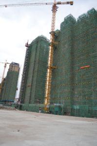 Qtz100 (TC6513-6) China Self-Erecting Tower Crane pictures & photos