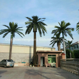 Garden Decoration Artificial King Coconut Palm Tree pictures & photos