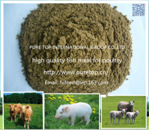 Chinese Fish Meal (FISH FEED) with Protein 65-72% pictures & photos