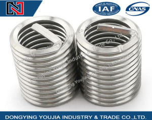 Stainless Steel Metric Fine Thread Insert pictures & photos