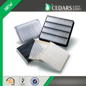 Reliable Wholesaler Air Filter for Car with 11 Years Experience pictures & photos