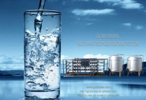 30t Water Filter Manufacturers in Drinking Water Treatment Plant pictures & photos