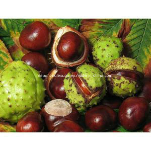 Horse Chestnut Extract/98% Esculin/ Aesculin, CAS 6805-41-0 pictures & photos