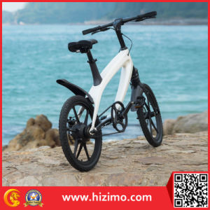 2017 Hot Sale 36V 240W E Bicycle Electric Bike pictures & photos