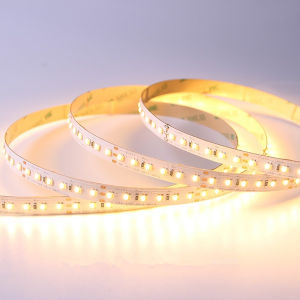 3014 Doule Color White and Warm White LED Strip Lighting pictures & photos