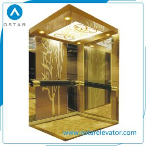 Mirror Etching Elevator Cabin Decoration Passenger Lift with Good Price pictures & photos