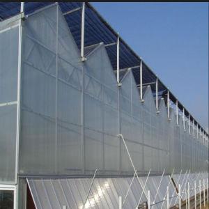 Multispan Plastic Film Greenhouse for Agriculture pictures & photos