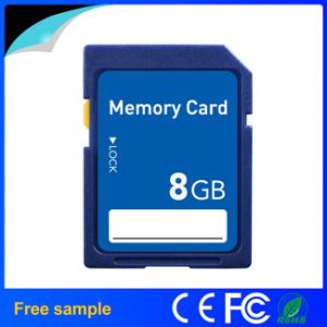Bulk High Quality Memory Card Customized Logo pictures & photos