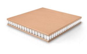 Huarui Honeycomb Sandwich Panel (HR1120) pictures & photos