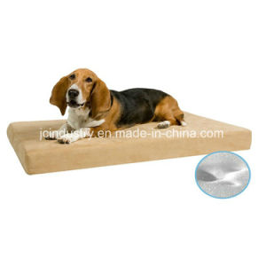 Dog Beds with Removable Cushion pictures & photos