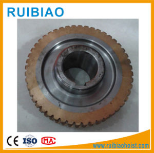 Anti-Wear Worm Steel/Aluminum/Copper/Brass/Bronze Gear and Shaft and Worm Wheel pictures & photos