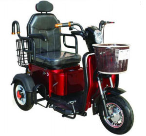 Small 3 Wheel Handicapped Tricycle with Chair