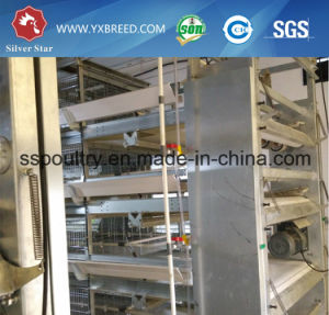 Machinery H Type Chicken Cage Broiler Automatic System Poultry Farms pictures & photos