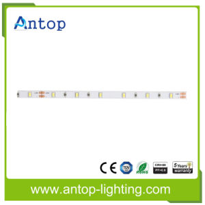 3014 IP20 LED Strip with 60LED/M pictures & photos