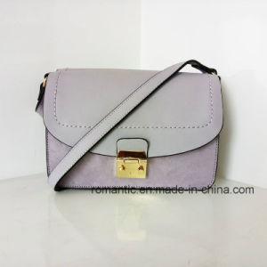 Trendy PU Lady Handbags Brand Designer Women Plush Hand Bag (Z-014) pictures & photos