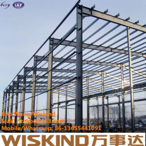 Wiskind High Quality Customised Design Steel Structure/Steel Structure, Steel Building Structure pictures & photos
