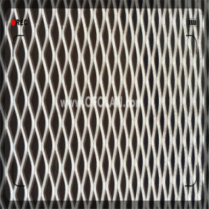Annealed Titanium Sheet Expanded Filter Mesh (6.0X12.5mm) pictures & photos