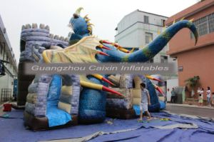 Inflatable Dungeons and Dragons Castle Sldie pictures & photos