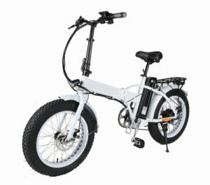 20 Inch Folding Mini Electric Fat Bike/Fat Tire Bike/Sand Beach E Bike pictures & photos