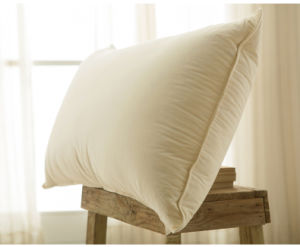 Soft Warm White Goose Down Pillow with Piping
