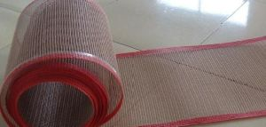 PTFE Open Mesh Fabric for Printing and Dyeing Machine pictures & photos