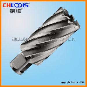 HSS Core Drill (weldon shank) ... (Dnhx) pictures & photos
