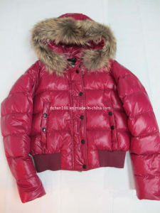 Ladies Short Down Jacket