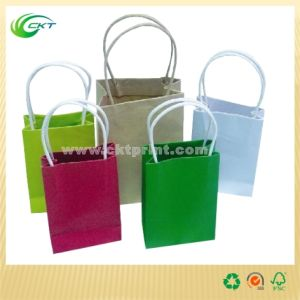 Pecycled Paper Bags for Shopping (CKT-PB-373)