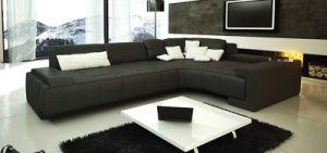 Leather Sofa/Corner Sofa /Modern Sofa (C065)